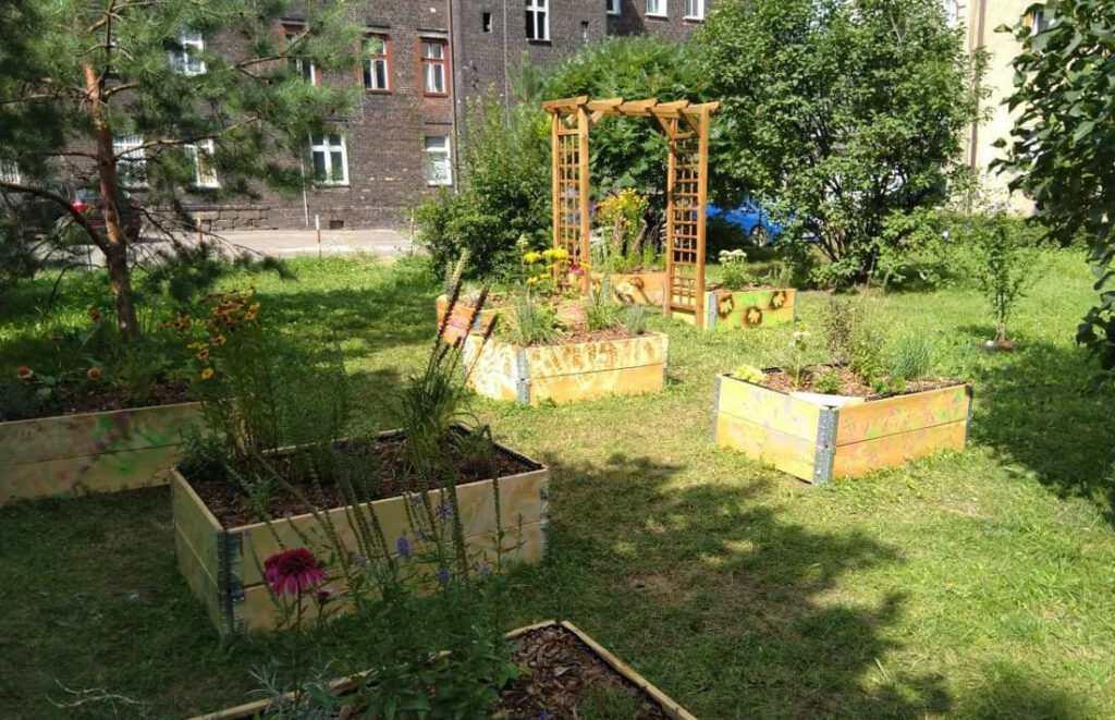 Ogród Społeczny w dzielnicy
